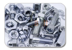 Stainless Steel Fasteners Bolt, Nut, Screw and Washer Distributors