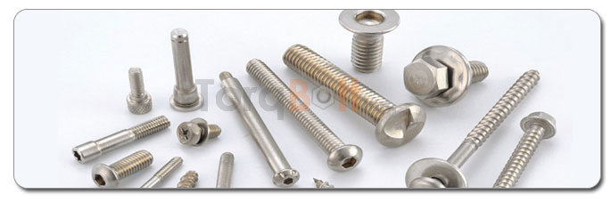 Manufacturers, Stockists & Distributors Of 18-8 Stainless Steel Bolts