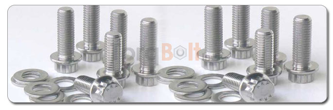 Manufacturers, Stockists & Distributors Of 310 Stainless Steel Bolts