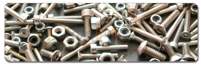 Manufacturers, Stockists & Distributors Of 310 Stainless Steel Screws