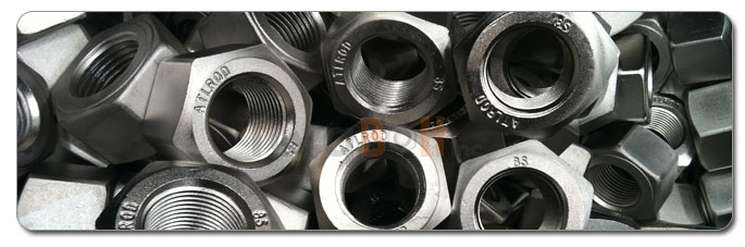 Manufacturers, Stockists & Distributors Of 316L Stainless Steel Nuts
