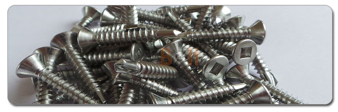 Manufacturers, Stockists & Distributors Of 317 Stainless Steel Screws