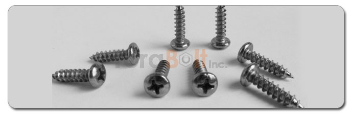 Manufacturers, Stockists & Distributors Of 347 Stainless Steel Screws