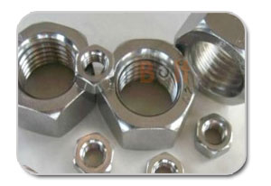 ACME Hex Nuts Manufacturers
