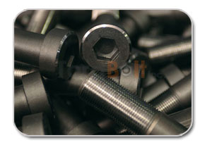Carbon and Alloy Steel Fastener as per A194 Distributors