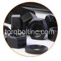 Carbon Steel Slotted Nuts