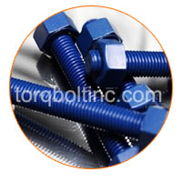 Hex Head Bolt With Plain Spring Washer  Surface Treatments