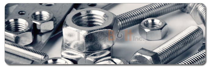 Manufacturers, Stockists & Distributors Of Duplex Steel Fasteners
