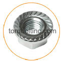 Nickel 201 Flange Nuts