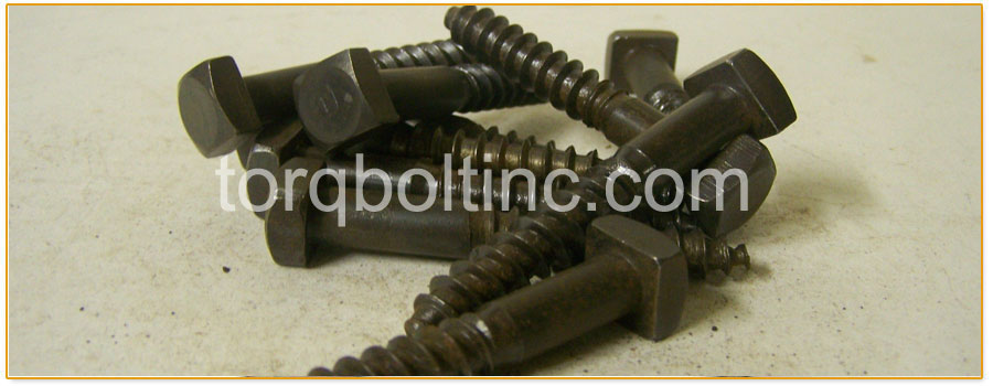 Original Photograph Of Lag Bolts At Our Factory