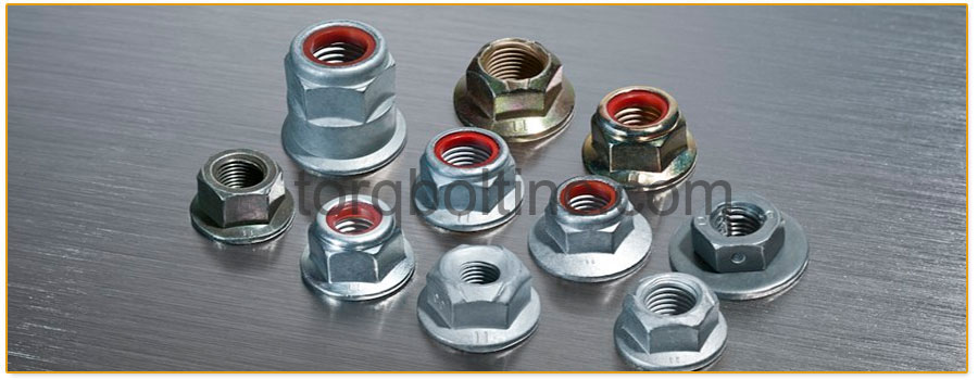 Original Photograph Of Prevailing Torque Lock Nuts At Our Factory