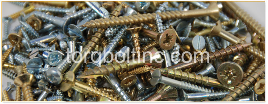 Original Photograph Of screws At Our Factory