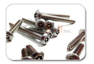 Security Head Screw
