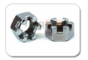 Slotted Hex Nut Distributors