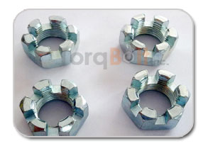 Slotted Hex Nut Manufacturers
