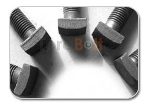 Square Head Machine Bolts