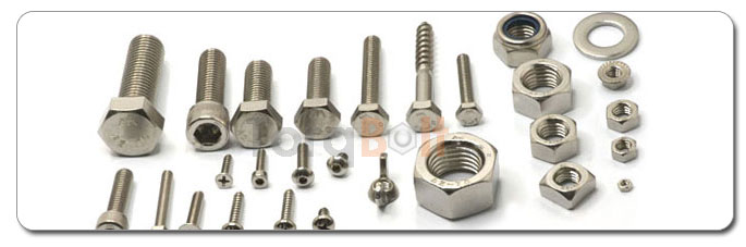 Manufacturers, Stockists & Distributors Of Stainless Steel Fasteners