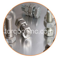 Stainless Steel Metric Nuts