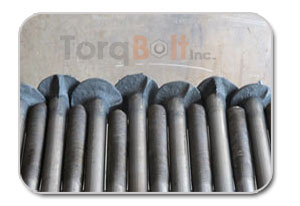 Timber Bolts Manufacturers