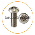 Nickel 201 Torx Bolts