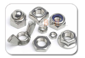 Stainless Steel Fasteners Bolt, Nut, Screw and Washer Manufacturer