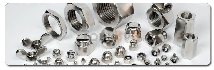 Manufacturers, Stockists & Distributors Of 18-8 Stainless Steel Nuts