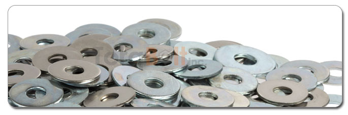Manufacturers, Stockists & Distributors Of 18-8 Stainless Steel Washer