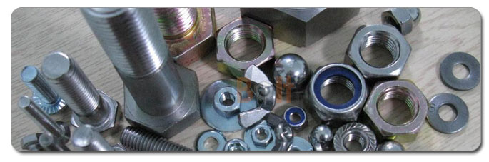 Manufacturers, Stockists & Distributors Of 310 Stainless Steel Nuts
