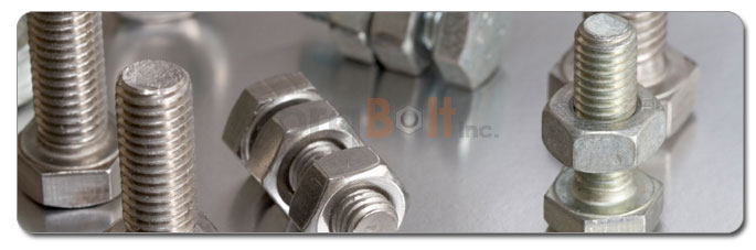 Manufacturers, Stockists & Distributors Of 316L Stainless Steel Bolts