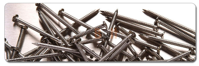 Manufacturers, Stockists & Distributors Of 316L Stainless Steel Screws