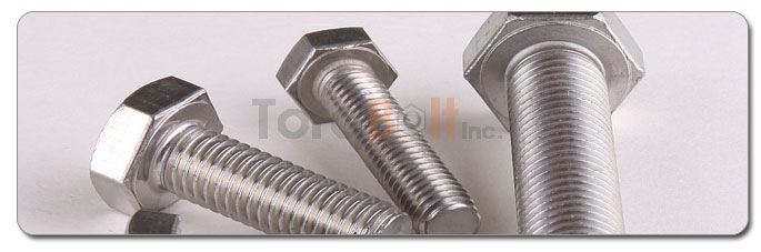 Manufacturers, Stockists & Distributors Of 317 Stainless Steel Bolts