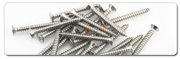 Manufacturers, Stockists & Distributors Of 317L Stainless Steel Screws