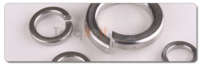 Manufacturers, Stockists & Distributors Of 317L Stainless Steel Washer