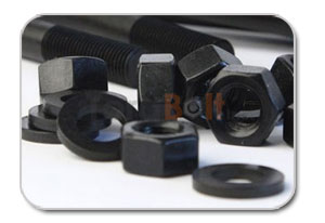 Carbon and Alloy Steel Fastener as per A194 Manufacturer