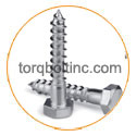 Titanium Grade 5 Coach screws / Lag screw
