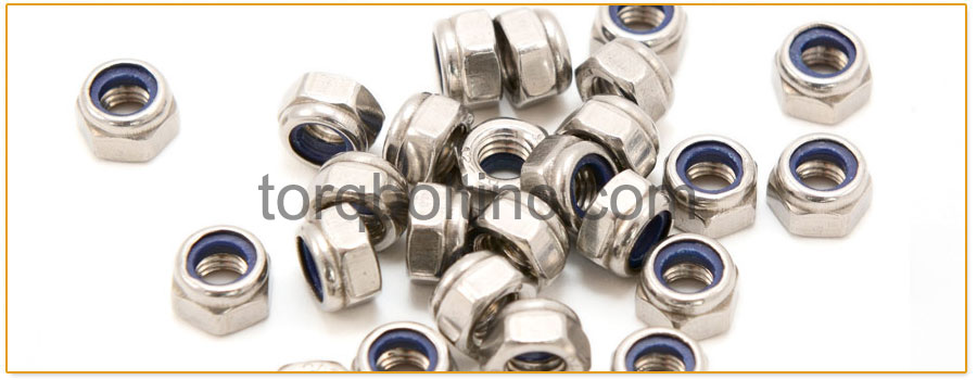 Original Photograph Of hex jam nylon lock nuts At Our Factory