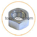 Titanium Grade 5 High Nuts