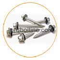 Titanium Grade 5 Roofing Screw