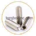 Nickel Alloy Metric set screws