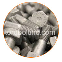 Hot Dipped Galvanizing Fasteners