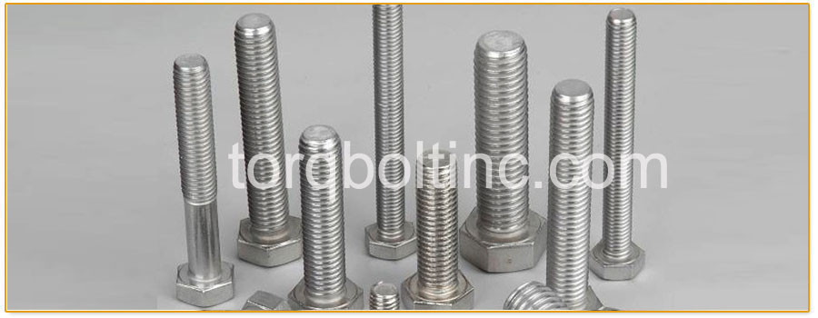 Incoloy 825 Fasteners Suppliers