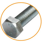 Stainless Steel Hex Bolts Price in US